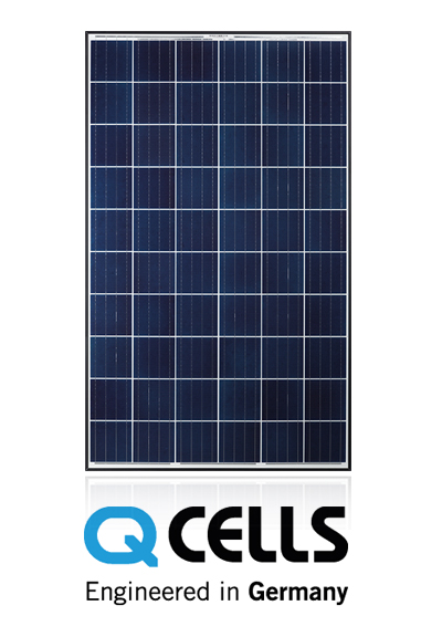 QPlus-Pro_361x673px